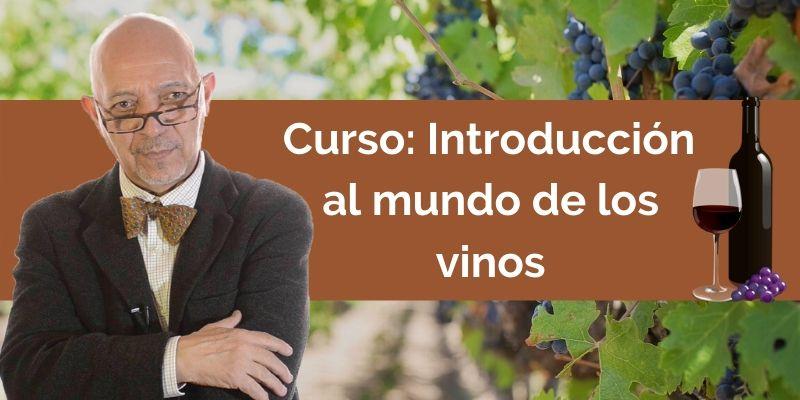Introducción al mundo de los vinos, Curso de vinos
