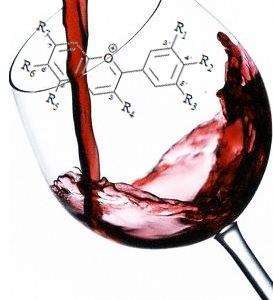 02  El vino es saludable gracias a su compuesto llamado tanino